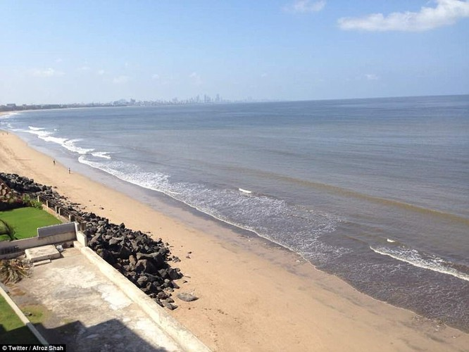 """Chiến dịch dọn rác bãi biển lớn nhất thế giới """"quét"""" hơn 5.000 tấn rác ảnh 2"""