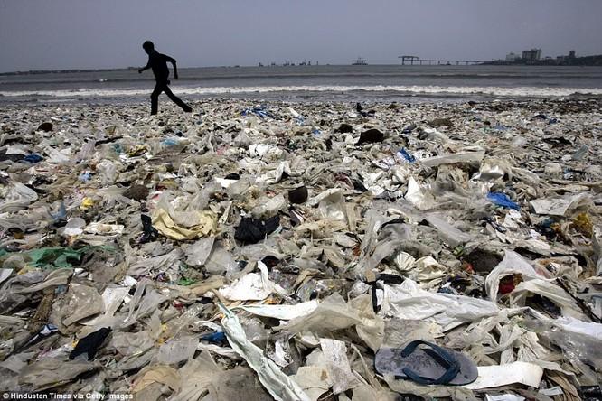 """Chiến dịch dọn rác bãi biển lớn nhất thế giới """"quét"""" hơn 5.000 tấn rác ảnh 8"""