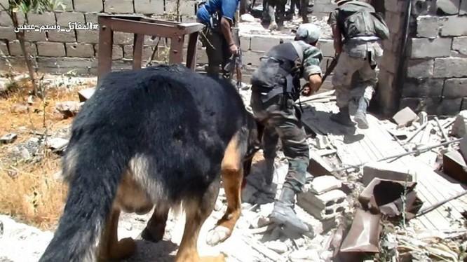 Chiến sự Syria: Vệ binh cộng hòa diệt hàng loạt phiến quân ở ngoại vi Damascus ảnh 9