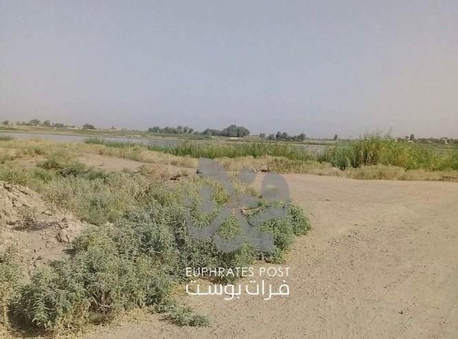 """""""Hổ Syria"""" chuẩn bị vượt sông Euphrates tấn công phiến quân IS ảnh 4"""