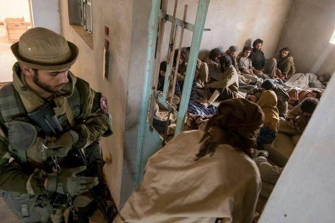 """Chiến sự Syria: Đặc nhiệm """"Săn IS"""" bắt sống 250 phiến quân IS ảnh 2"""
