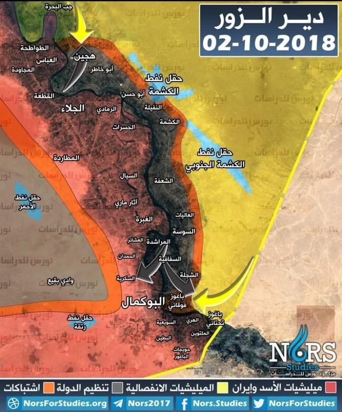 Chiến sự Syria: SDF chiếm cứ địa IS, diệt 75 phiến quân tại đông Euphrates ảnh 1