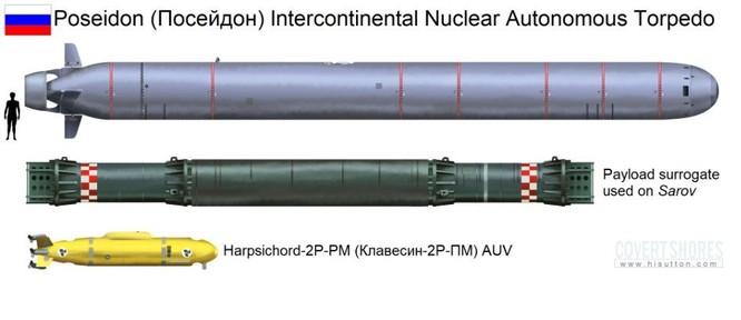 Mỹ và đồng minh sẽ thương vong nặng nề nếu Nga sử dụng ngư lôi Poseidon ảnh 1