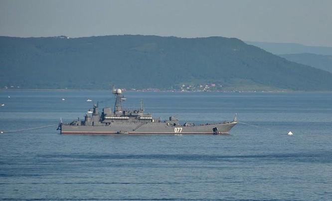 Tàu đổ bộ Peresvet lớp Ropucha Hải quân Nga (ảnh tư liệu)