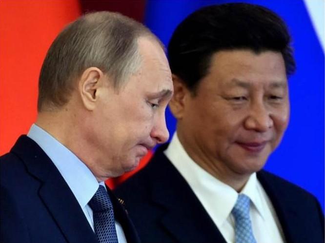Tổng thống Nga và người đồng cấp Trung Quốc. Ảnh: Thời báo Hoàn Cầu, Trung Quốc