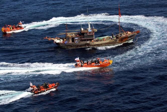 Ngày 8/10/2014, các tàu cảnh sát biển Hàn Quốc tiến hành bao vây một chiếc tàu cá Trung Quốc. Ảnh: Guancha