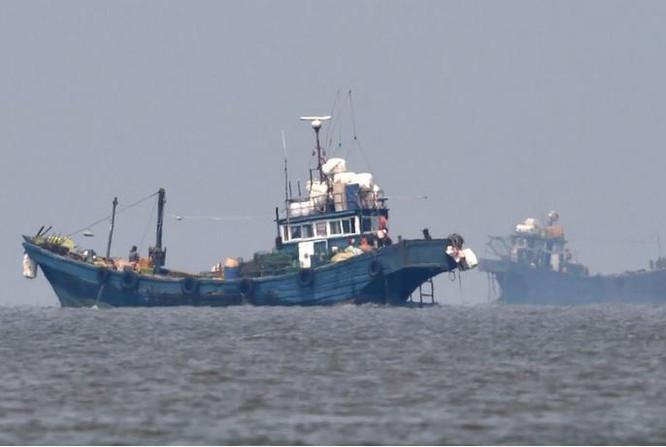 Tàu cá Trung Quốc đến vùng biển có