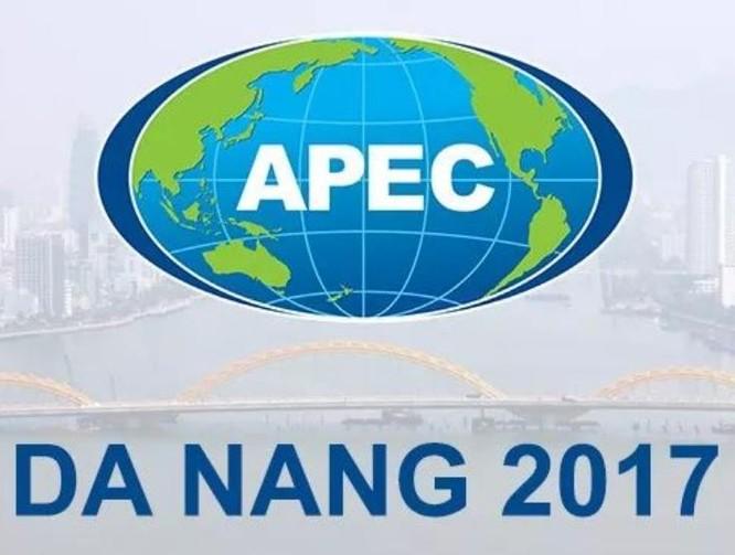 Việt Nam tổ chức thành công Hội nghị Cấp cao APEC 2017, được cộng đồng quốc tế đánh giá cao. Ảnh: Kaixian.