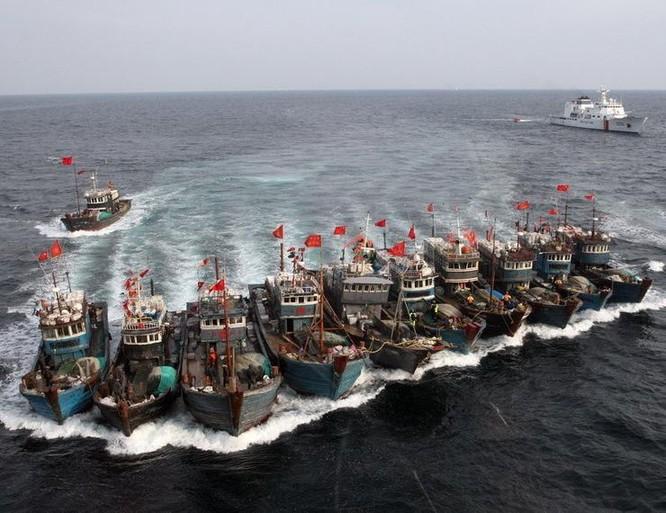 Cảnh sát biển Hàn Quốc kiên quyết tấn công hành vi đánh bắt phi pháp và chống trả bạo lực của tàu cá Trung Quốc. Ảnh: QQ.