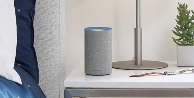 Amazon chế tạo chip AI dành riêng cho trợ lý ảo Alexa - Ảnh 1