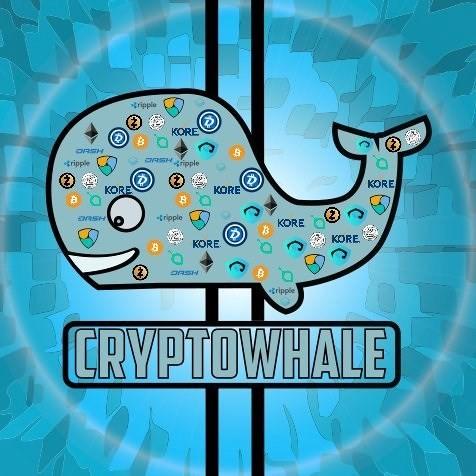 Triệu phú Bitcoin 19 tuổi truyền bá tiền ảo mới 'ngon bổ rẻ' trên toàn thế giới - Ảnh 2