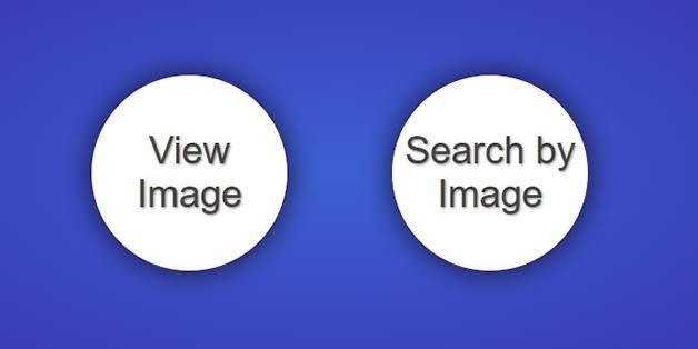 Khôi phục nút View Image trên Google Images bằng giải pháp thuần Việt, áp dụng cho Chrome và Firefox - Ảnh 1