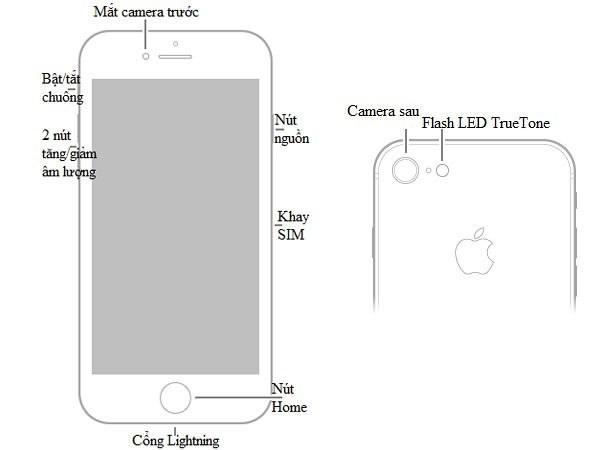 Hướng dẫn sử dụng iPhone 8, iPhone 8 Plus toàn tập - Ảnh 1