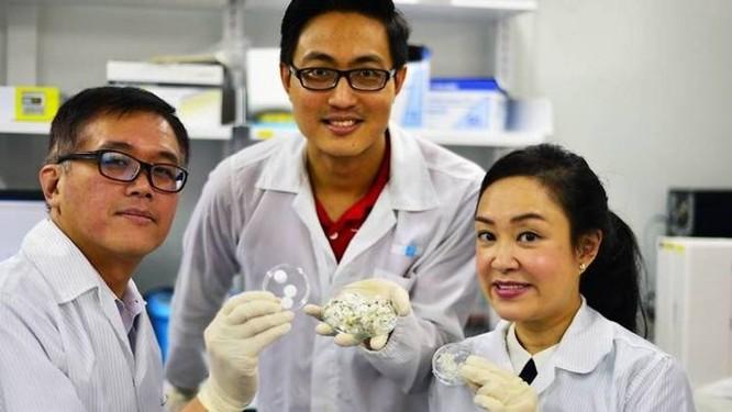Collagen từ vẩy cá có thể chữa lành vết thương nhanh hơn? - Ảnh 1