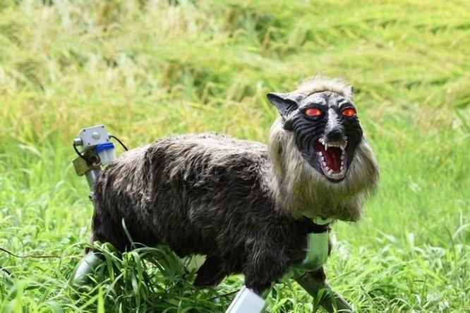 Robot... chó sói hỗ trợ nông dân Nhật bảo vệ mùa màng trước các loài phá hoại - Ảnh 3