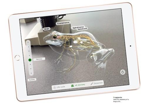 Apple trình làng iPad giá rẻ dành cho giáo dục, hỗ trợ Apple Pencil - Ảnh 4