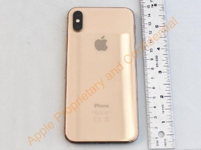 iPhone mới của Apple sẽ có giá khởi điểm 550 USD và dùng được 2 SIM 1 lúc ảnh 9
