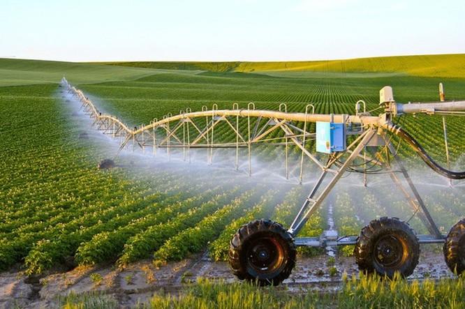 Sản xuất nông nghiệp được hỗ trợ tối đa dưới thời cách mạng công nghệ 4.0 ảnh 1
