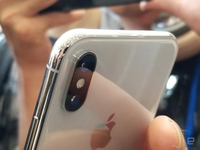 Đây sẽ là chiếc iPhone X kỳ lạ nhất bạn từng thấy ảnh 2