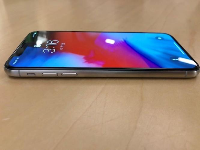 Đây sẽ là chiếc iPhone X kỳ lạ nhất bạn từng thấy ảnh 3
