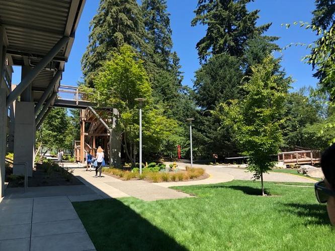 Thăm quan nhà cây Microsoft xây riêng cho nhân viên nghỉ dưỡng ảnh 1
