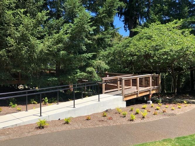 Thăm quan nhà cây Microsoft xây riêng cho nhân viên nghỉ dưỡng ảnh 11