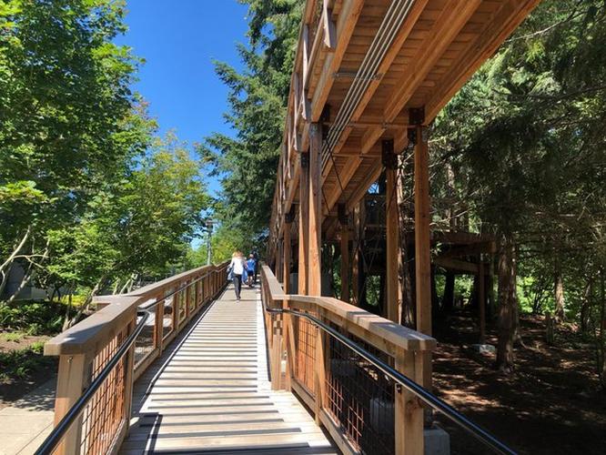 Thăm quan nhà cây Microsoft xây riêng cho nhân viên nghỉ dưỡng ảnh 2