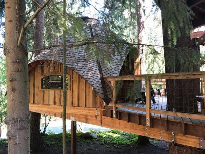 Thăm quan nhà cây Microsoft xây riêng cho nhân viên nghỉ dưỡng ảnh 3