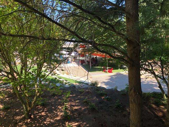 Thăm quan nhà cây Microsoft xây riêng cho nhân viên nghỉ dưỡng ảnh 9