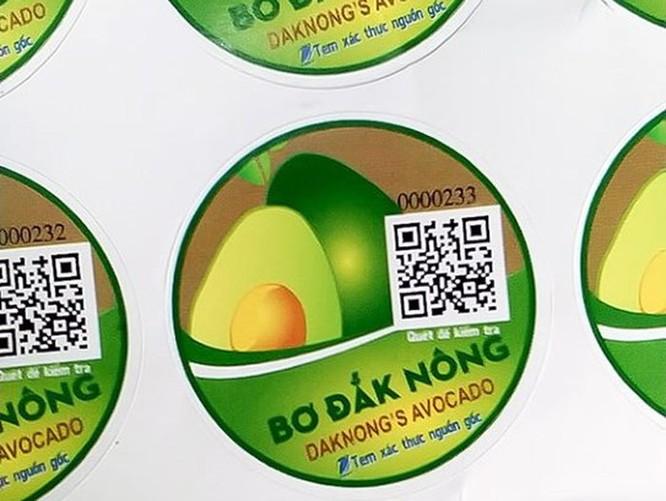 VNPT cấp miễn phí 35.000 tem xác thực nguồn gốc trái bơ ở Đắk Nông ảnh 1