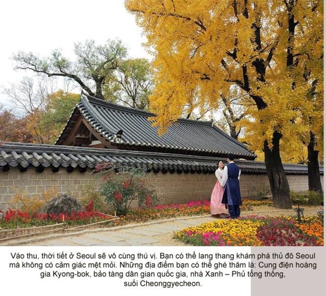 Photo Story - Đây là thời điểm tuyệt vời để đến Hàn Quốc ảnh 3
