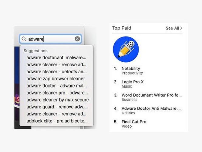 Ứng dụng trả phí trên App Store bí mật gửi dữ liệu về TQ ảnh 1