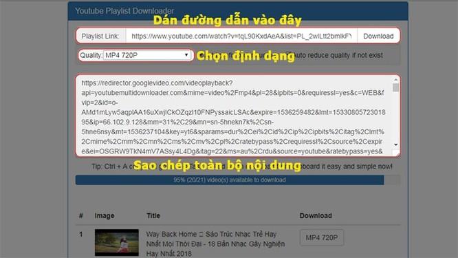Hướng dẫn cách tải hàng loạt video Youtube theo Playlist ảnh 2