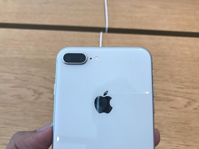 'Lên đời' với iPhone XS Max hay mua iPhone 8 Plus? ảnh 2