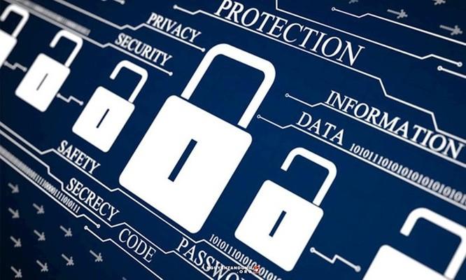 Phú Yên: Đội ứng cứu sự cố an toàn thông tin mạng là đầu mối an toàn thông tin toàn tỉnh ảnh 1