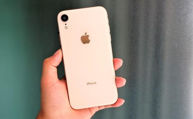 iPhone XR chưa mở bán nhưng hàng nhái đã xuất hiện tại VN ảnh 2