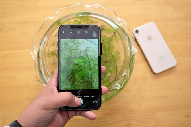 iPhone XR chưa mở bán nhưng hàng nhái đã xuất hiện tại VN ảnh 9