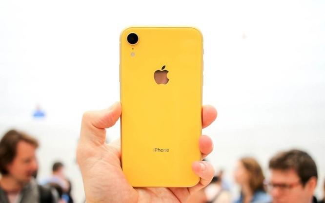 Chưa về Việt Nam, iPhone XR đã loạn giá ảnh 2