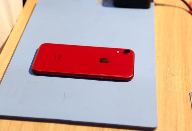 Bên trong iPhone XR vừa về VN - 1 pin, dung lượng 2.942 mAh ảnh 1