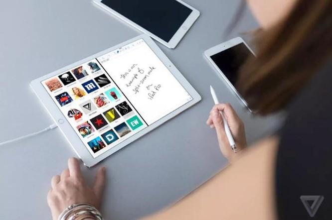 Apple sẽ dừng công bố số lượng iPhone, iPad và máy tính Mac bán ra ảnh 1