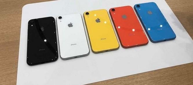 Tờ Nikkei: Apple hủy bỏ kế hoạch tăng sản lượng iPhone XR ảnh 1
