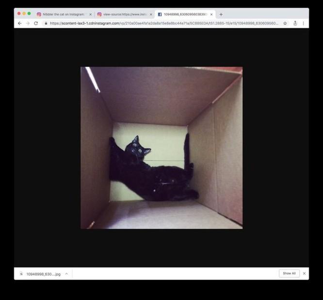 Cách tải ảnh Instagram về máy nhanh nhất bằng Chrome ảnh 6