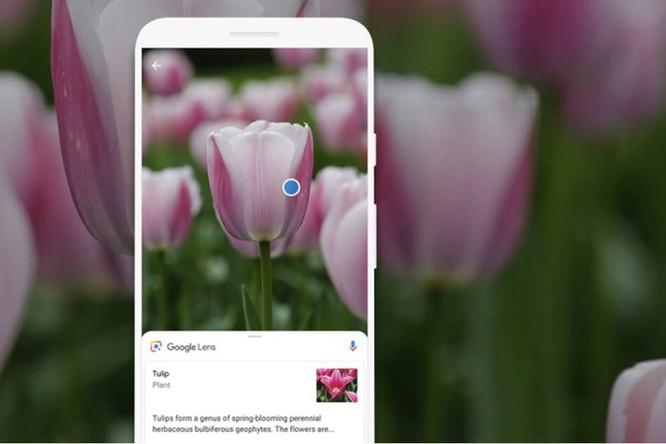 Cuối cùng Google cũng đưa tính năng tìm kiếm Lens lên iPhone ảnh 1
