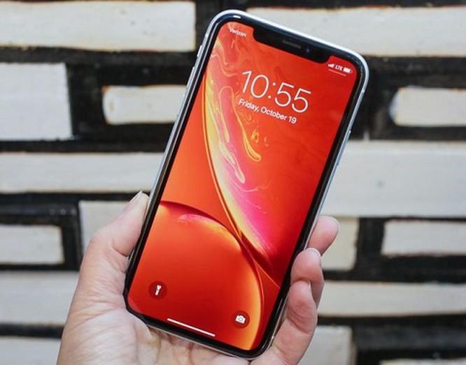 iPhone XR - phiên bản 'giá rẻ' của Apple đáng lựa chọn năm 2018! ảnh 2