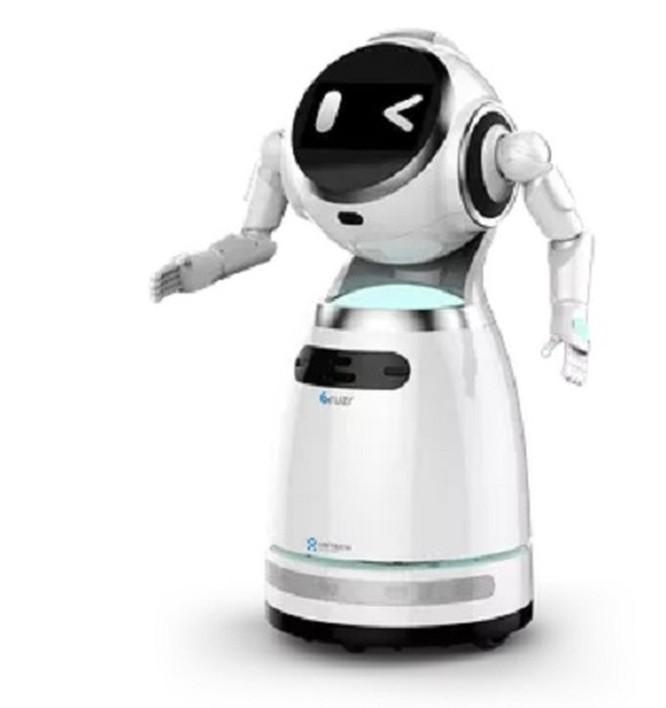 Robot Ubtech Walker ra mắt với một đôi tay mới tại CES 2019 ảnh 2