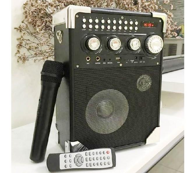 Sắm loa bluetooth 2 micro hát karaoke ngày Tết ảnh 2