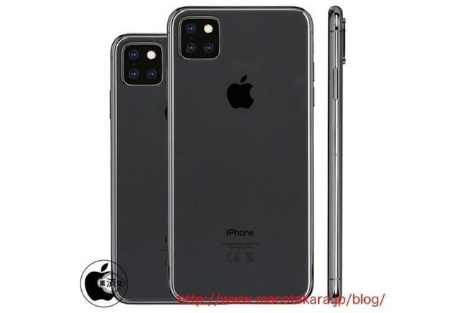 iPhone 11 sẽ có màn hình 6,5 inch, hỗ trợ 3 camera? ảnh 1