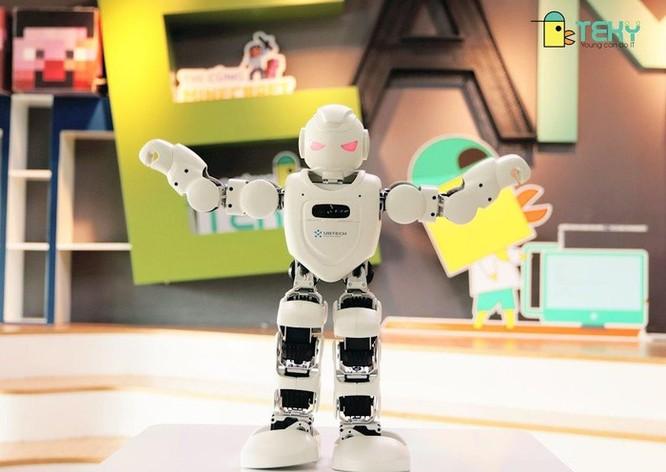 Robot giáo dục sẽ cùng học sinh tham gia Trại hè Công nghệ 2019 ảnh 2