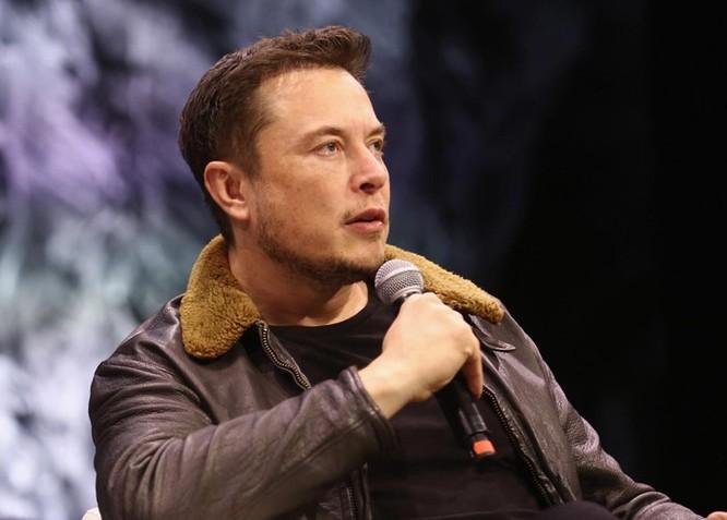 Elon Musk đọc rap tưởng nhớ một con khỉ đột ảnh 1