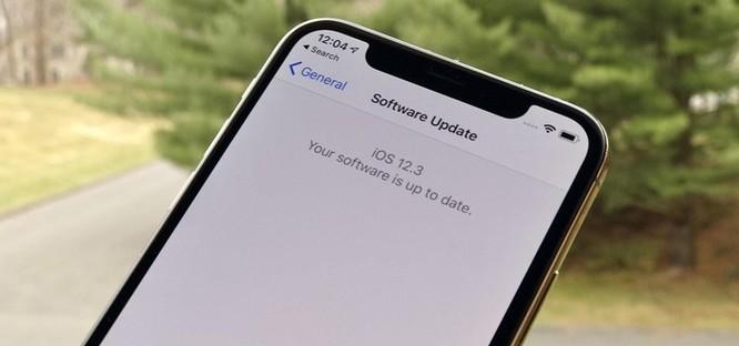 Đợi iOS 13, người dùng VN đã có thể tải bản 12.3 ảnh 1